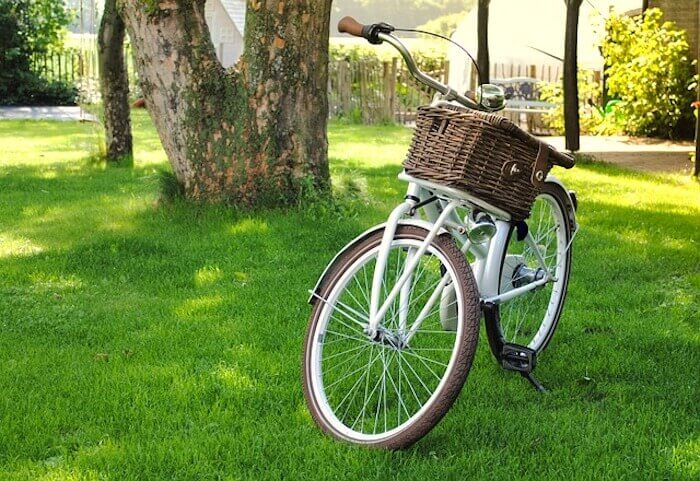 bicycle in park home travel