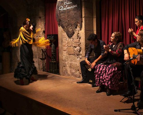 flamenco show on stage with dancers