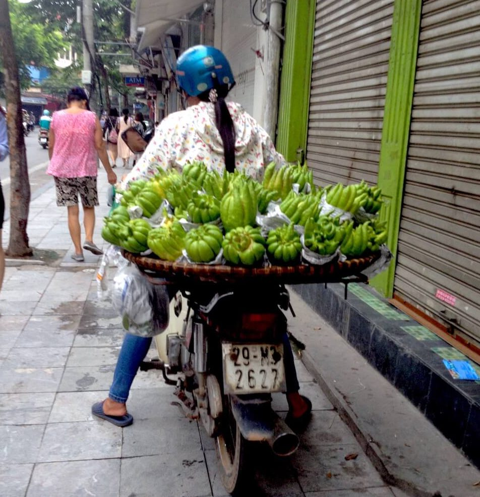 The Best of Hanoi