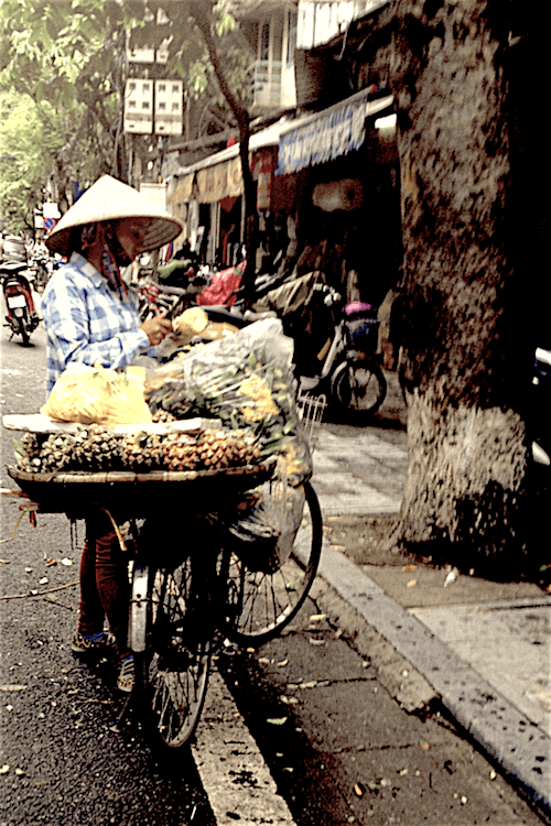 hanoi man selling from his bicycle