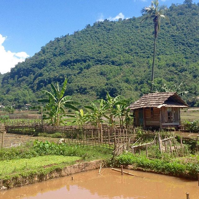 mai chau house in field
