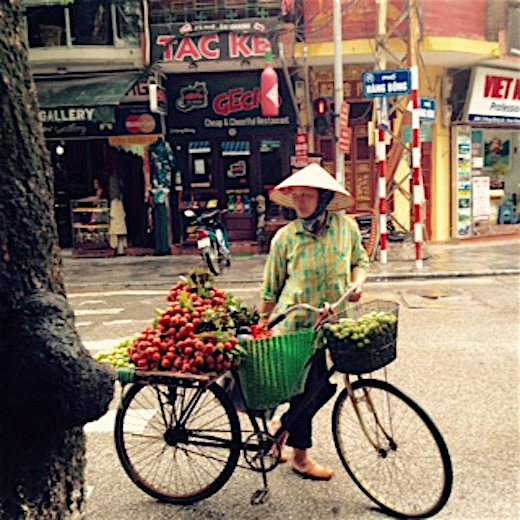 best of hanoi street vendor posing with fruits on back of bike