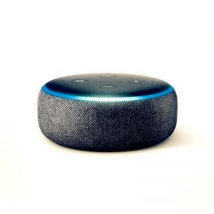 gift giving echo dot