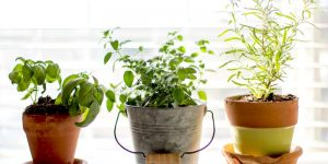 9 Liberating Benefits When You Simplify Your Home